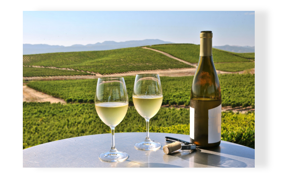 PERFECT FOR YOUR WINE TASTING VACATION TO NAPA VALLEY
